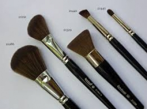 Make Up & Facial Brushes